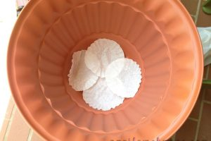 Tip: use coffee filters in the bottom of a planting pot to prevent dirty from clogging up the drain holes.