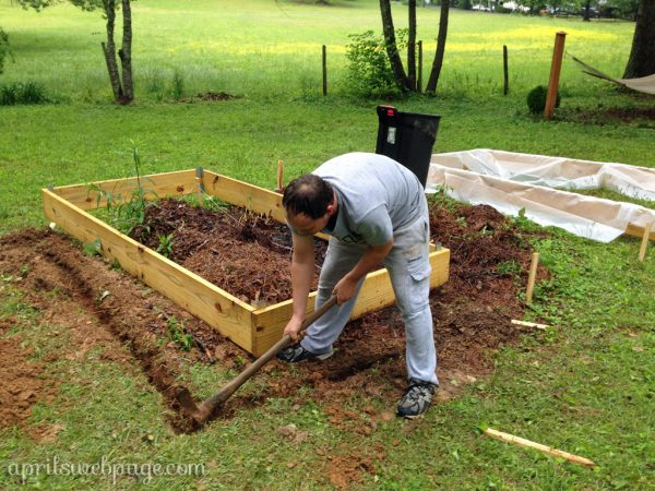leveling the garden beds