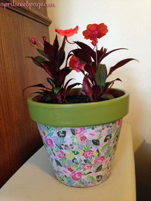 decorated & planted terracotta pot