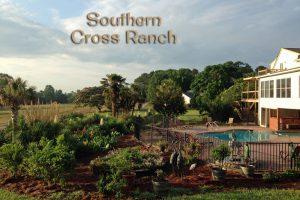 Southern Cross Ranch Trip