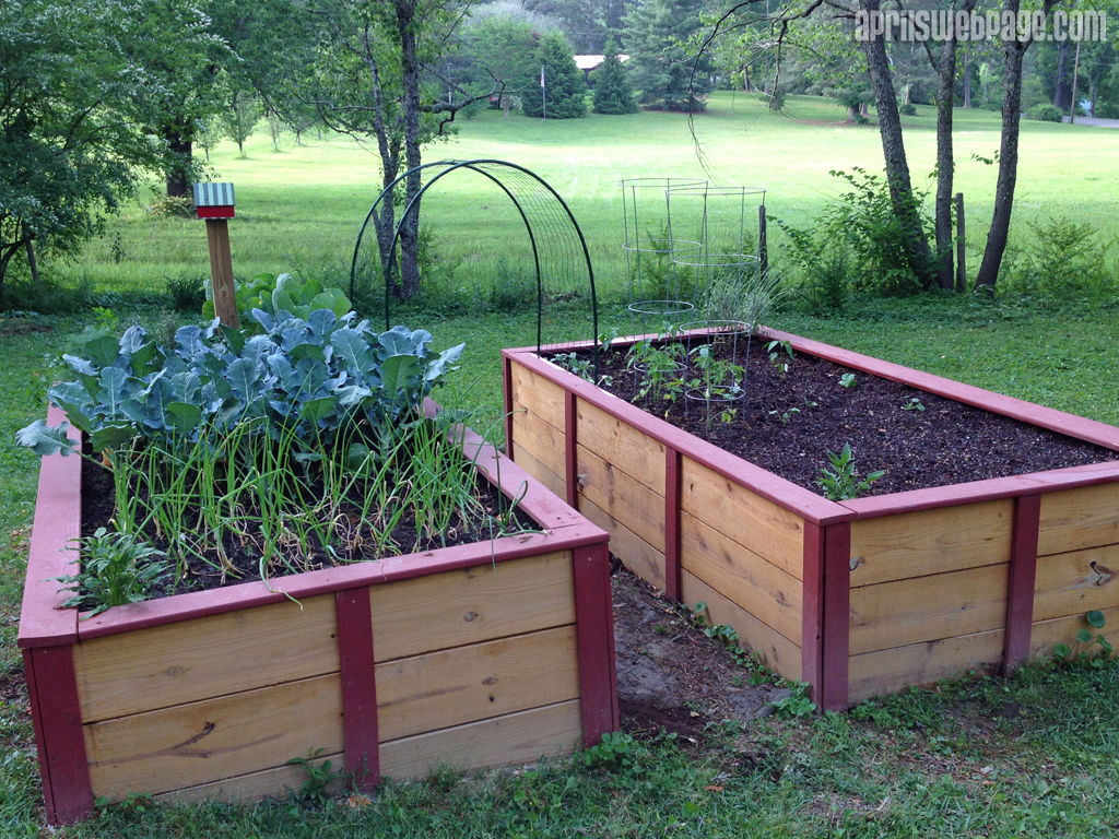 raised garden bed 2015
