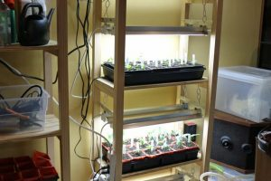 Grow Light Cart
