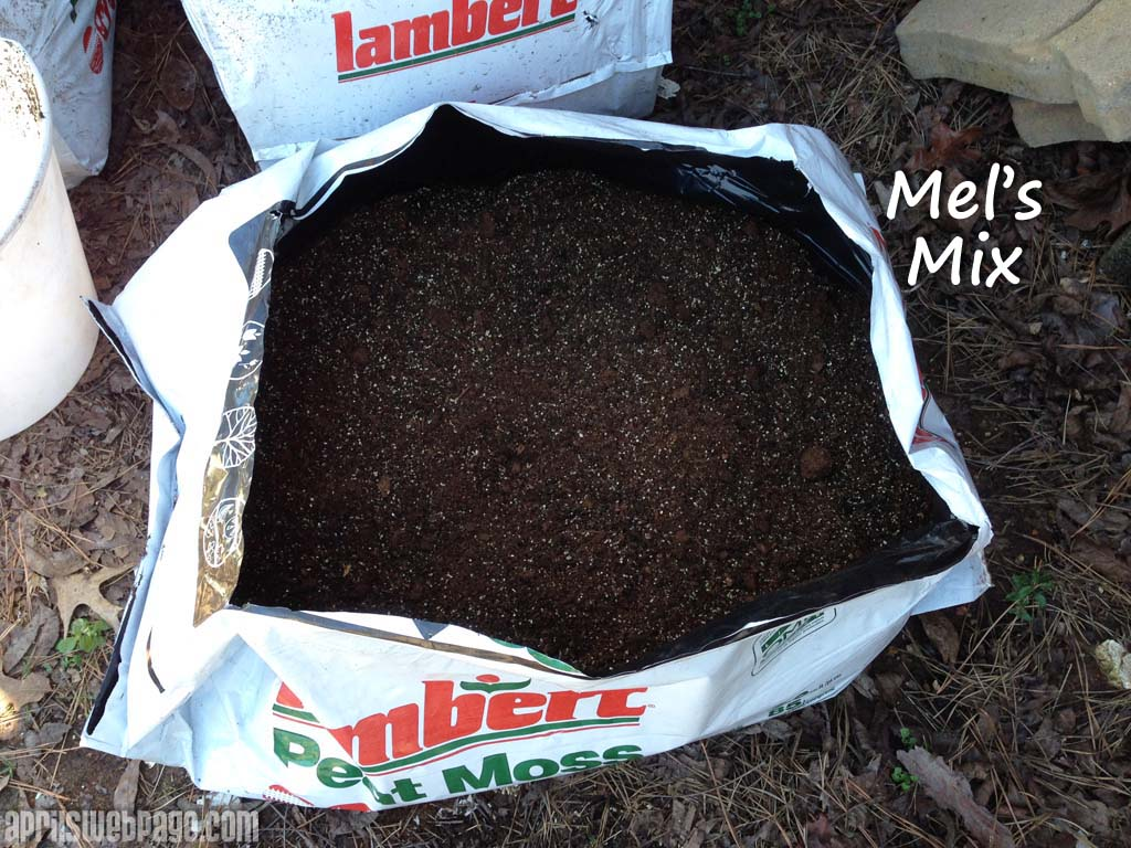 Mel's Mix: Square Foot Gardening