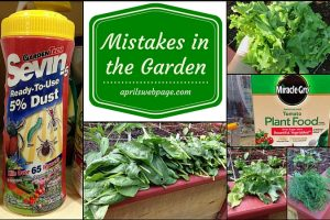 Mistakes in the Garden